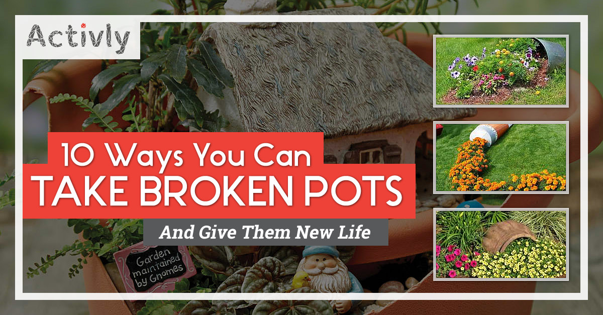 10 Ways You Can Take Broken Pots And Give Them New Life ...