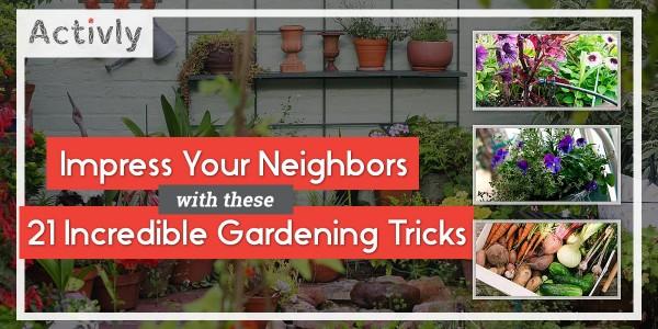 gardening tricks