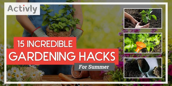 incredible gardening hacks for summer