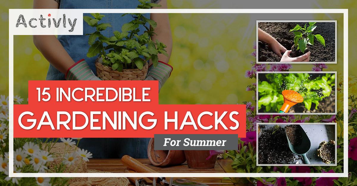 incredible gardening hacks for summer